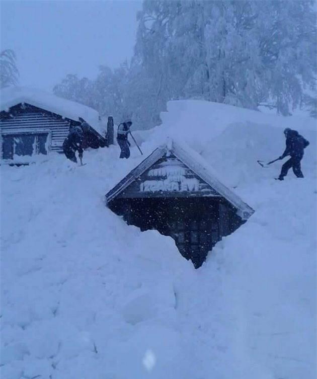 Lạnh giá tiếp tục càn quét châu Âu, 61 người chết - Ảnh 2.