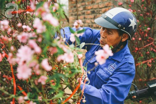 Rằm tháng Chạp, đã thấy nôn nao vị Tết khi hoa đào về trên phố xuân - Ảnh 12.