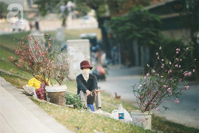 Rằm tháng Chạp, đã thấy nôn nao vị Tết khi hoa đào về trên phố xuân - Ảnh 17.