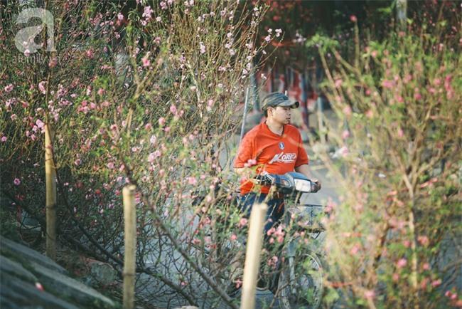 Rằm tháng Chạp, đã thấy nôn nao vị Tết khi hoa đào về trên phố xuân - Ảnh 19.