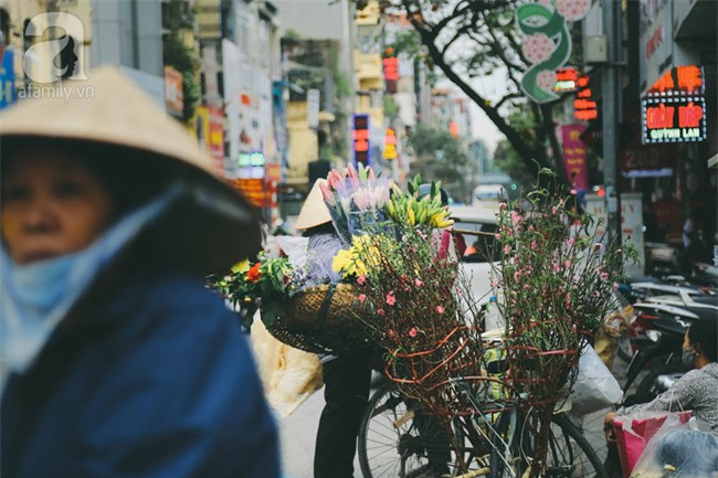 Rằm tháng Chạp, đã thấy nôn nao vị Tết khi hoa đào về trên phố xuân - Ảnh 8.