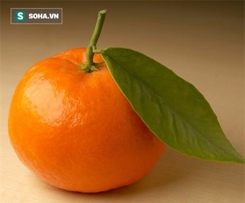 Việt Nam không thiếu loại quả ngọc màu vàng và ăn 1 quả bằng uống 5 vị thuốc bổ - Ảnh 1.