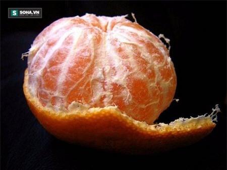Việt Nam không thiếu loại quả ngọc màu vàng và ăn 1 quả bằng uống 5 vị thuốc bổ - Ảnh 2.