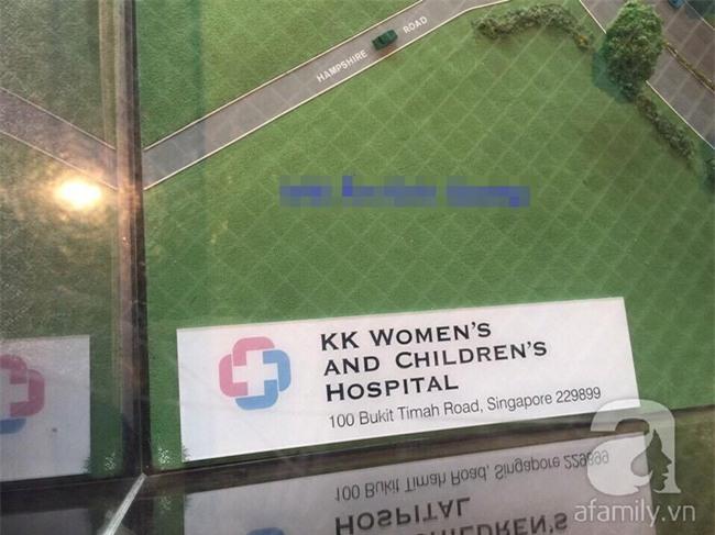 Lùm xùm vụ trục lợi tiền ủng hộ bé bị não úng thủy chữa trị tại Singapore, tình nguyện viên và sư thầy lên tiếng - Ảnh 12.