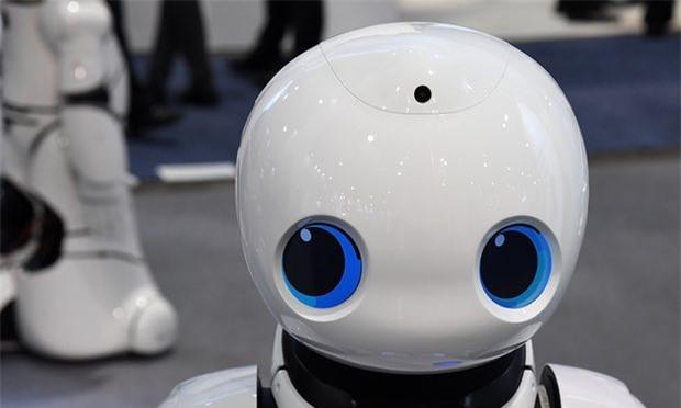 robot sap duoc trao quyen con nguoi o chau au? hinh anh 1