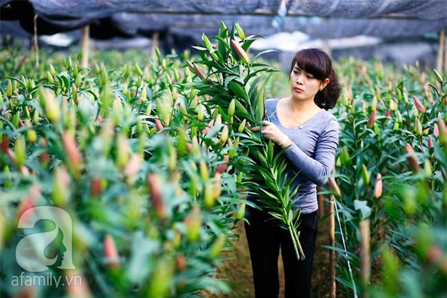 4 làng hoa đẹp long lanh ngay ven Hà Nội nên ghé đến để cảm nhận rõ vị Xuân - Ảnh 1.