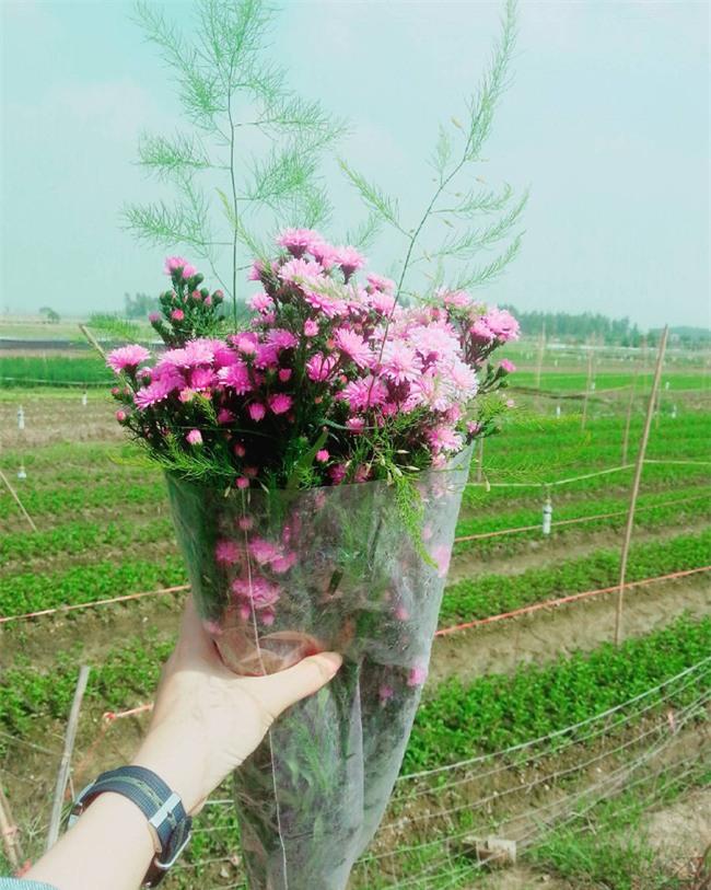 4 làng hoa đẹp long lanh ngay ven Hà Nội nên ghé đến để cảm nhận rõ vị Xuân - Ảnh 11.