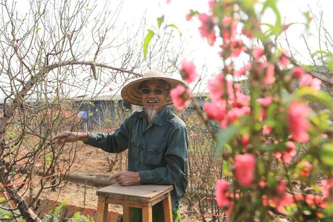 4 làng hoa đẹp long lanh ngay ven Hà Nội nên ghé đến để cảm nhận rõ vị Xuân - Ảnh 8.