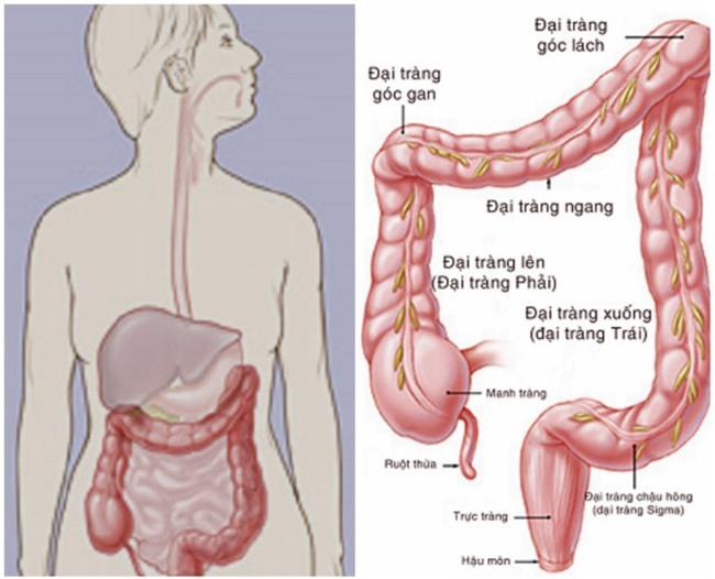 Ung thư vì bỏ qua triệu chứng suốt 10 năm: Bác sĩ chỉ rõ 3 dấu hiệu chớ coi thường - Ảnh 4.
