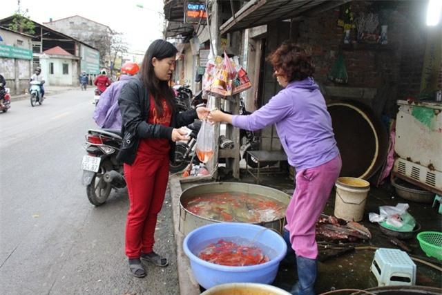 Chị Huyền, tiểu thương tại chợ Lĩnh Nam cho biết chị nhập 10 kg cá chép đỏ giá 180.000 đồng/kg tại chợ Yên Sở từ chiều 22 âm lịch. Được biết chị bán lẻ 40.000 đồng/ bộ 3 con.