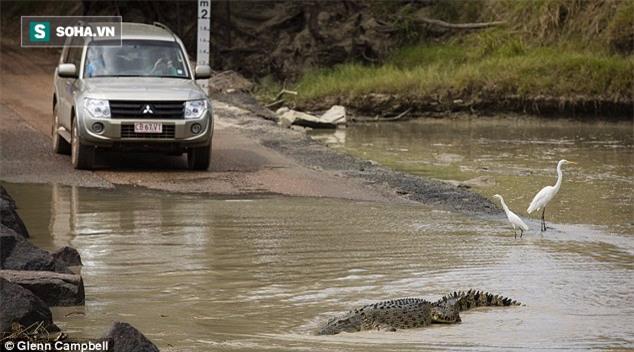 Lội qua sông cùng 2 phụ nữ, người đàn ông bị cá sấu đoạt mạng - Ảnh 2.