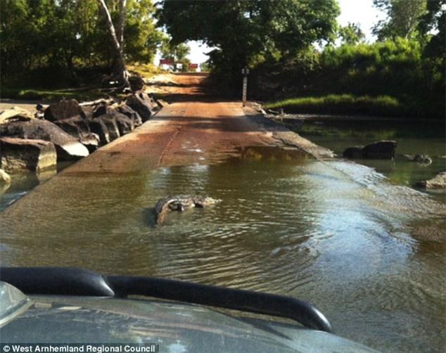 Lội qua sông cùng 2 phụ nữ, người đàn ông bị cá sấu đoạt mạng - Ảnh 4.
