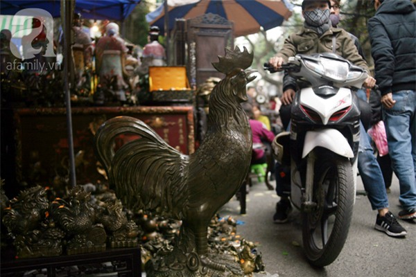Hà Nội: Xuất hiện gà đồng cao hơn 1 mét nặng 30kg, giá 25 triệu đồng - Ảnh 1.