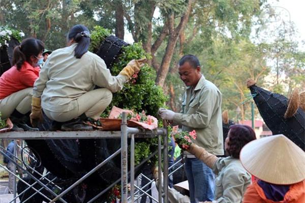 Người Hà Nội sắp được chiêm ngưỡng 12 con giáp bằng cây và hoa thật dịp Tết - Ảnh 13.