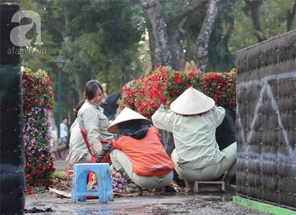 Người Hà Nội sắp được chiêm ngưỡng 12 con giáp bằng cây và hoa thật dịp Tết - Ảnh 14.