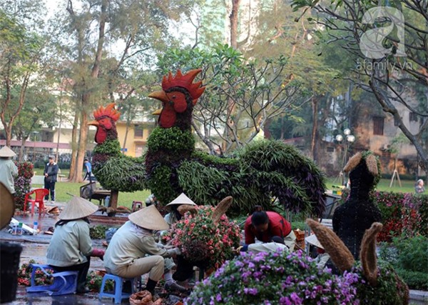 Người Hà Nội sắp được chiêm ngưỡng 12 con giáp bằng cây và hoa thật dịp Tết - Ảnh 2.