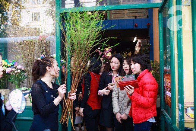 Hà Nội: Chi 72 triệu để mua hoa tươi nhập khẩu đủ tiêu chí độc và đẹp về chơi Tết - Ảnh 6.