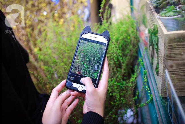 Hà Nội: Chi 72 triệu để mua hoa tươi nhập khẩu đủ tiêu chí độc và đẹp về chơi Tết - Ảnh 7.
