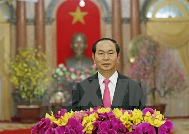 Thu chuc Tet Dinh Dau 2017 cua Chu tich nuoc Tran Dai Quang hinh anh 1