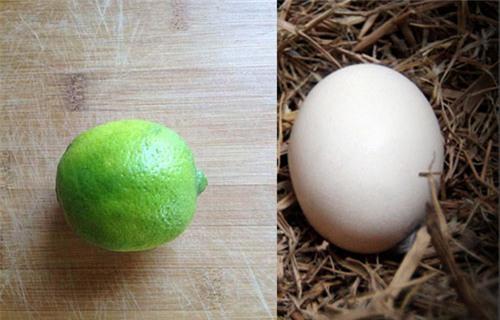 """Dùng 1 quả trứng để biến da căng như """"trứng gà bóc"""" - chuyện thật như đùa - Ảnh 1."""
