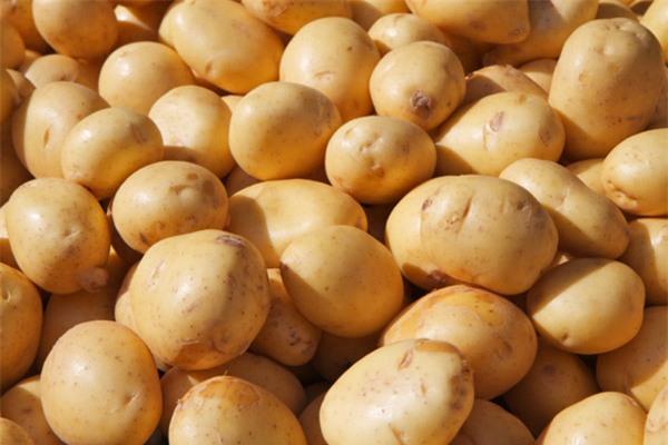 Top 10 thực phẩm quý hơn thuốc bổ được cả thế giới công nhận: Việt Nam không thiếu! - Ảnh 3.