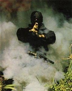 su that ninja nhat don tho, phan than thanh tram nguoi hinh anh 1