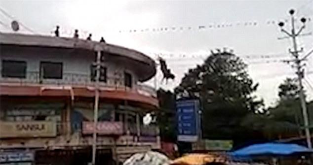 Chú bò nhảy tự tử từ nóc tòa nhà xuống đất trước sự ngỡ ngàng của người dân xung quanh - Ảnh 2.