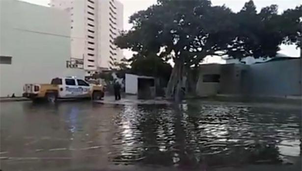 Bể kính chứa 13 con cá mập bất ngờ bị vỡ, nước tràn ngập cả khu dân cư - Ảnh 3.