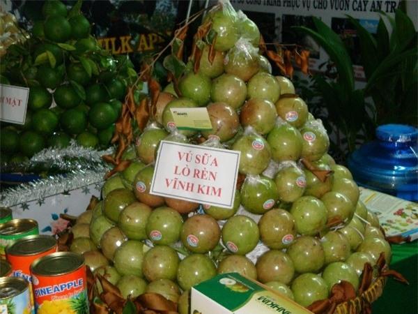 Vú sữa là đặc sản tuyệt vời của Việt Nam. (Ảnh: Internet)