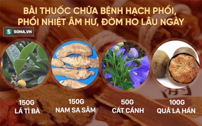 La hán: Trái cây được Đông y TQ ca tụng là quả thần tiên chữa nhiều loại bệnh - Ảnh 4.