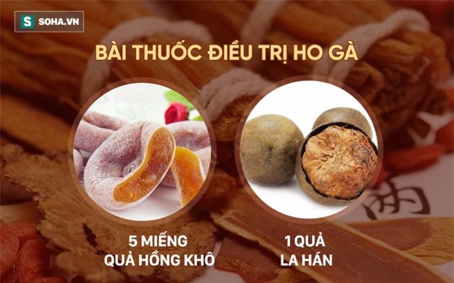 La hán: Trái cây được Đông y TQ ca tụng là quả thần tiên chữa nhiều loại bệnh - Ảnh 6.