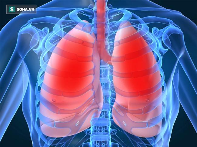 5 thứ làm hại tim, phổi, thận, gan, mật nhiều nhất: Có thể bạn vẫn vô tình ăn hàng ngày - Ảnh 2.