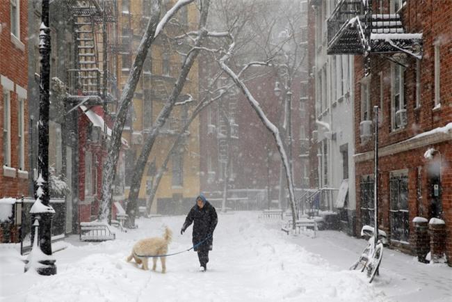 Bão tuyết phủ trắng xóa New York, ít nhất một người chết - Ảnh 5.