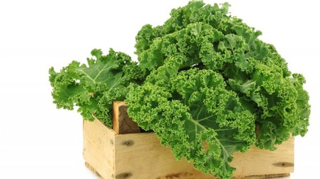 Loại rau cải nhiều canxi hơn sữa, ngừa ung thư khiến thế giới phát sốt đã đến Việt Nam - Ảnh 5.