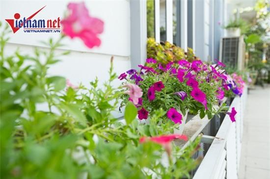Thăm nhà đẹp phong cách hoàng gia của Hồ Quỳnh Hương - Ảnh 18.