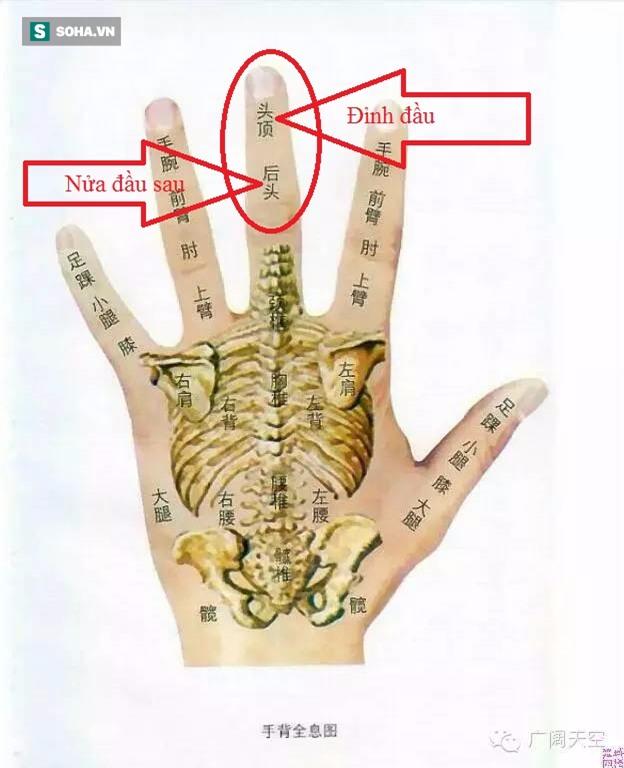 Bôi dầu gió lên đốt ngón tay giữa: Cách hay trong Đông y để phát hiện bệnh về não - Ảnh 5.