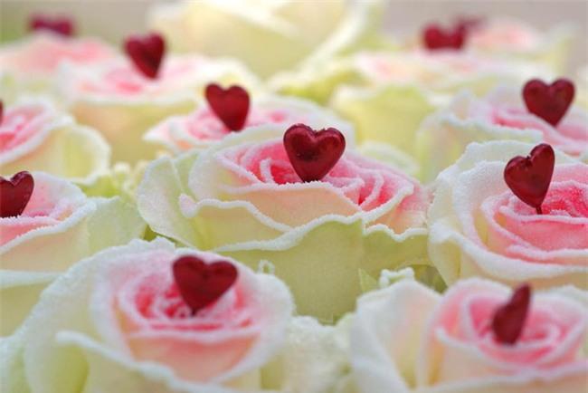 Gần 300.000 đồng cho một bông hồng phủ chocolate trong ngày Valentine - Ảnh 1.