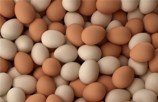 Sự thật về trứng gà vỏ trắng và vỏ nâu