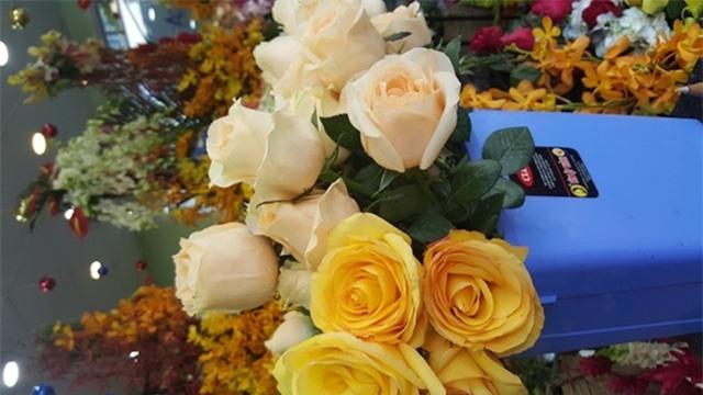 Không chỉ Tulip, hồng Ecuador cũng được khách hàng ưa chuộng vì màu sắc và độ bền hơn hẳn hoa nội