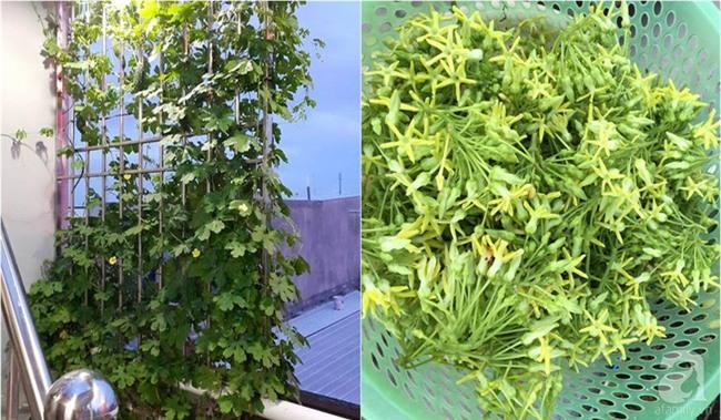 Chỉ với 5 triệu đồng, cô giáo trẻ ở Sài Gòn đã có 1 khu vườn trồng hoa và rau rất xinh xắn - Ảnh 22.