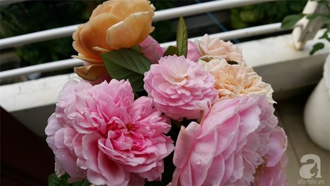 Chỉ với 5 triệu đồng, cô giáo trẻ ở Sài Gòn đã có 1 khu vườn trồng hoa và rau rất xinh xắn - Ảnh 23.