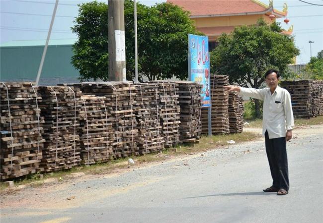 bãi gỗ khủng của đại gia Sài Gòn, bãi gỗ khủng gây bất an khu dân cư ở phường Phú Hữu, bãi gỗ của đại gia làm dân bức xúc
