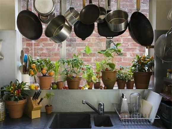dụng cụ nhà bếp, dụng cụ nhà bếp độc hại, dụng cụ nhà bếp chứa độc tố chết người