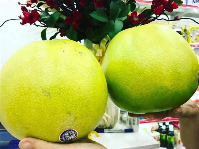 bưởi mỹ, bưởi úc, bưởi đặc sản, bưởi đặc sản Việt Nam, hoa quả nhập ngoại, hoa quả ngoại, người việt sính ngoại, quả lạ