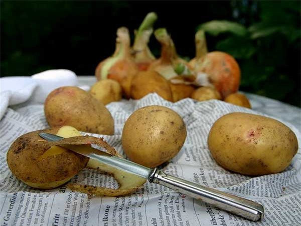 Lợi ích sức khoẻ không ngờ của vỏ khoai tây - Ảnh 1.