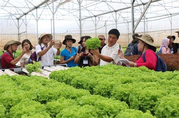 Nông nghiệp công nghệ cao, vốn cho nông nghiệp công nghệ cao, khởi nghiệp nông nghiệp công nghệ cao, đầu tư nông nghiệp