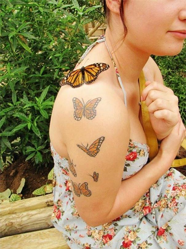 Chỉ vài giây sau, con bướm tội nghiệp đã bị hóa phép dính vào da của mụ phù thủy, chịu chung số phận với 5 con trước đó.