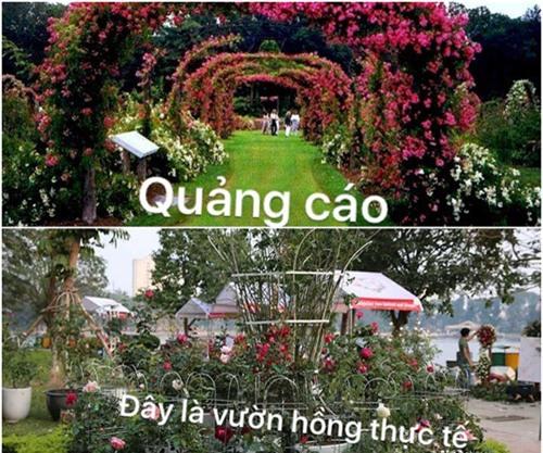"""sung sot voi 3 le hoi hoa duoc vi nhu """"tham hoa mua hang online"""" - 1"""