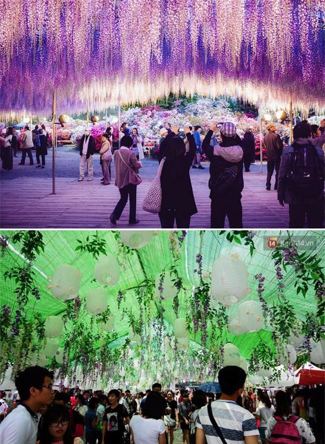 Lễ hội hoa gây thất vọng ở Hà Nội và nghịch lý kì dị: Càng chê càng tò mò và cứ thế kéo đến đông - Ảnh 7.