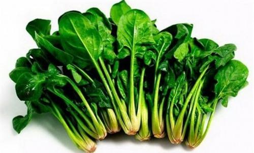 Rau cải chứa một số hóa chất thực vật khác giúp ức chế sự phát triển các khối u (Ảnh minh họa).